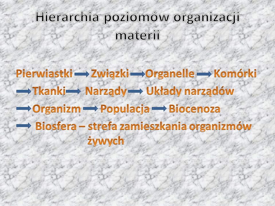 Hierarchia poziomów organizacji materii