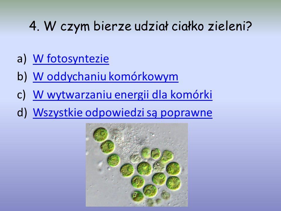 4. W czym bierze udział ciałko zieleni