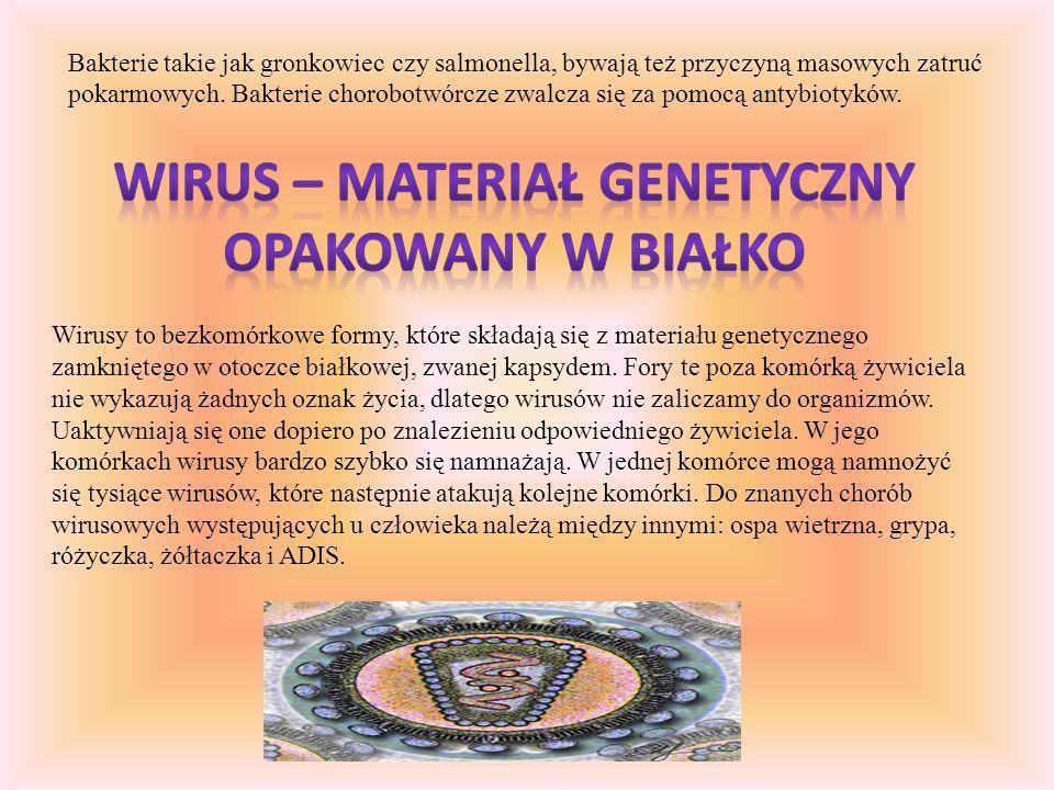 Wirus – materiał genetyczny opakowany w białko