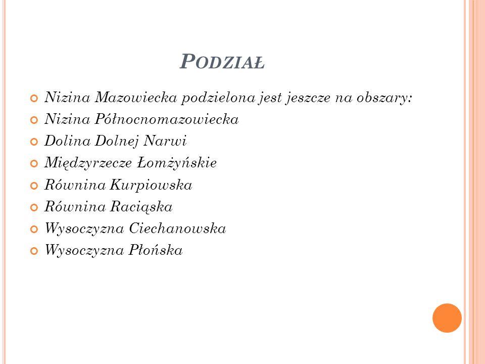 Podział Nizina Mazowiecka podzielona jest jeszcze na obszary: