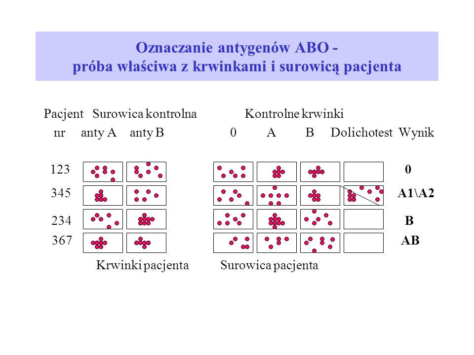 Oznaczanie antygenów ABO - próba właściwa z krwinkami i surowicą pacjenta