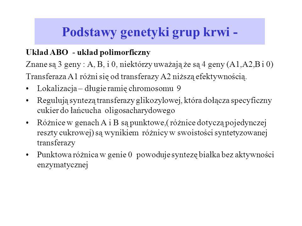 Podstawy genetyki grup krwi -