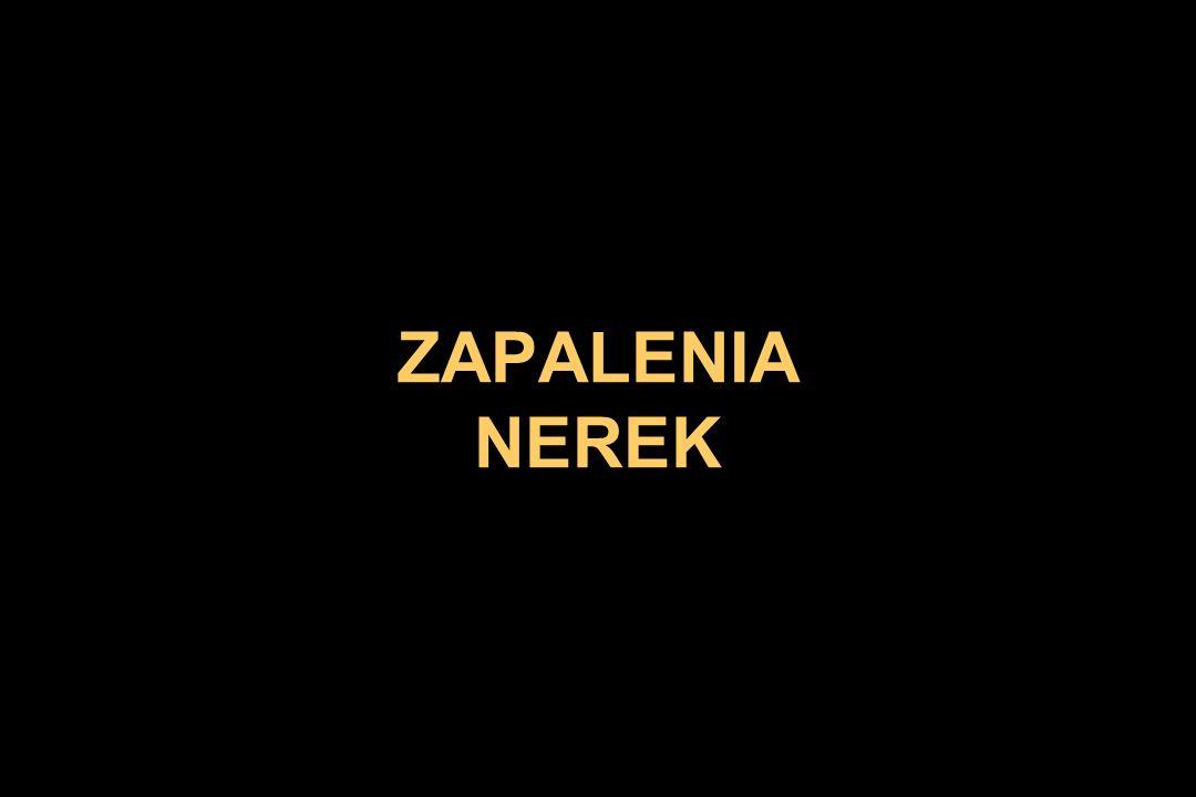 ZAPALENIA NEREK