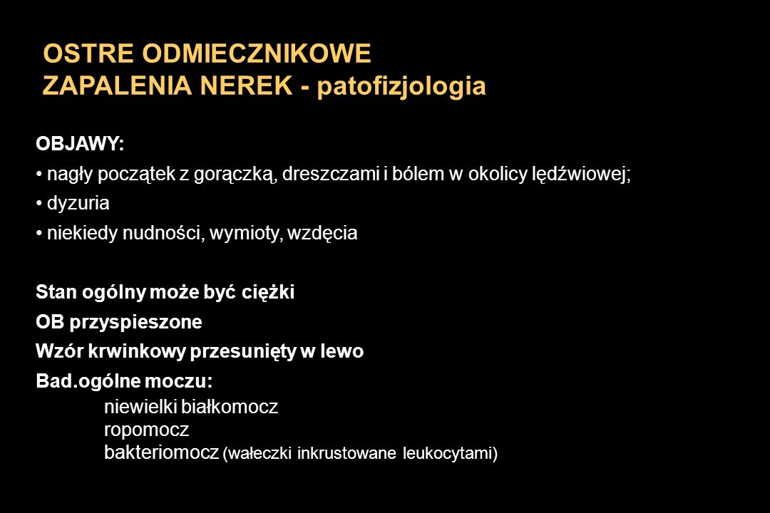 ZAPALENIA NEREK - patofizjologia