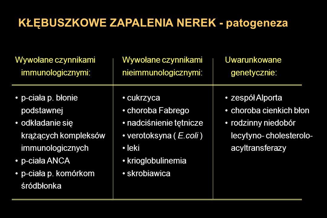 KŁĘBUSZKOWE ZAPALENIA NEREK - patogeneza