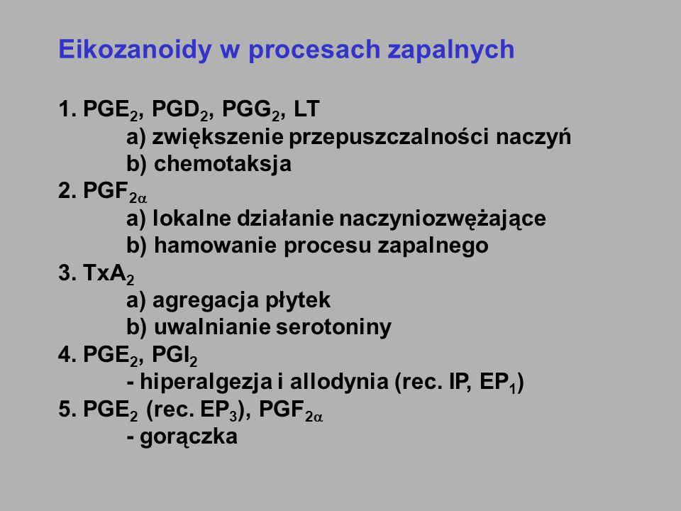 Eikozanoidy w procesach zapalnych