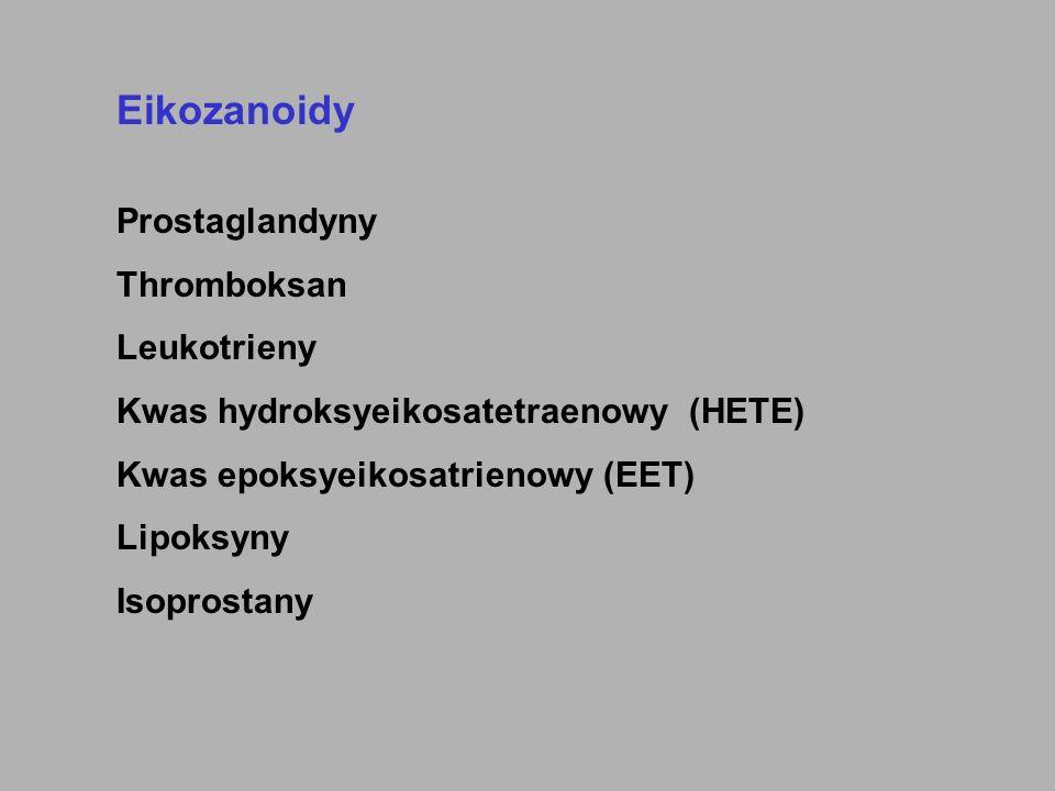 Eikozanoidy Prostaglandyny Thromboksan Leukotrieny