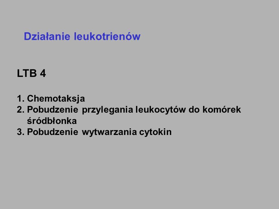 Działanie leukotrienów