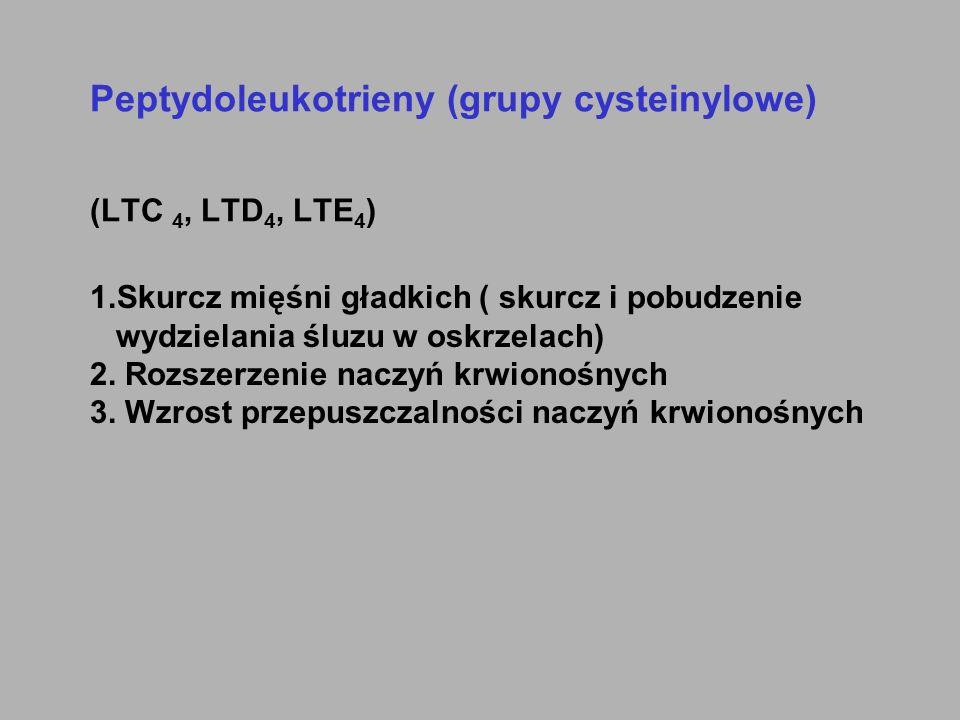 Peptydoleukotrieny (grupy cysteinylowe) (LTC 4, LTD4, LTE4)