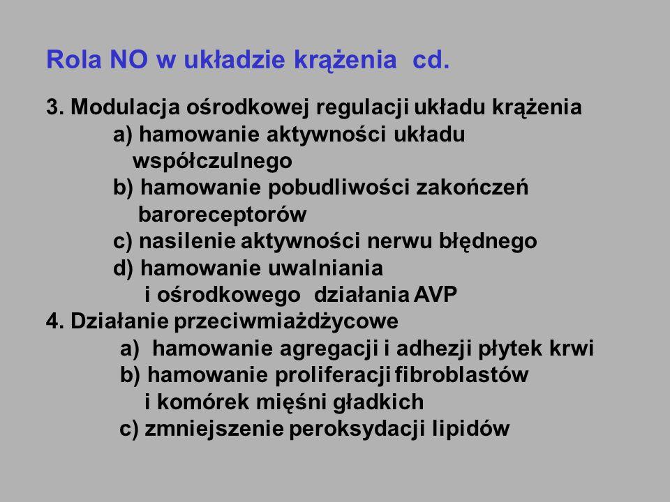 Rola NO w układzie krążenia cd.