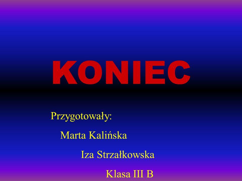 KONIEC Przygotowały: Marta Kalińska Iza Strzałkowska Klasa III B