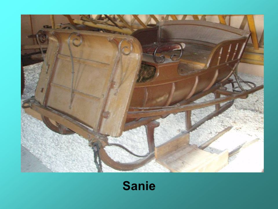 Sanie