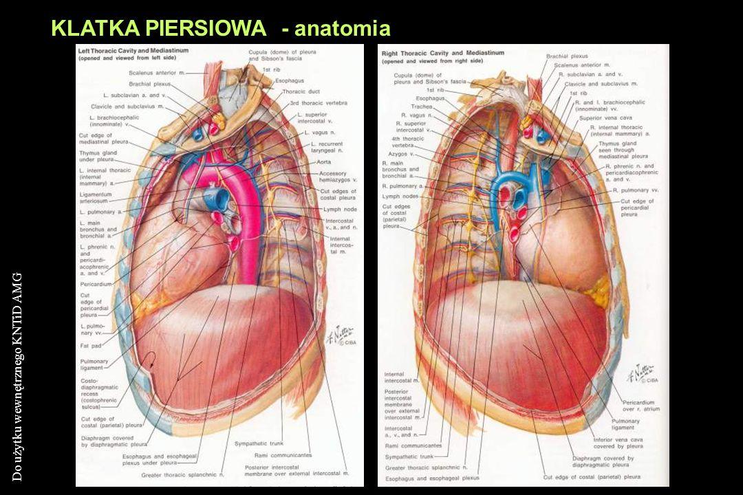 KLATKA PIERSIOWA - anatomia