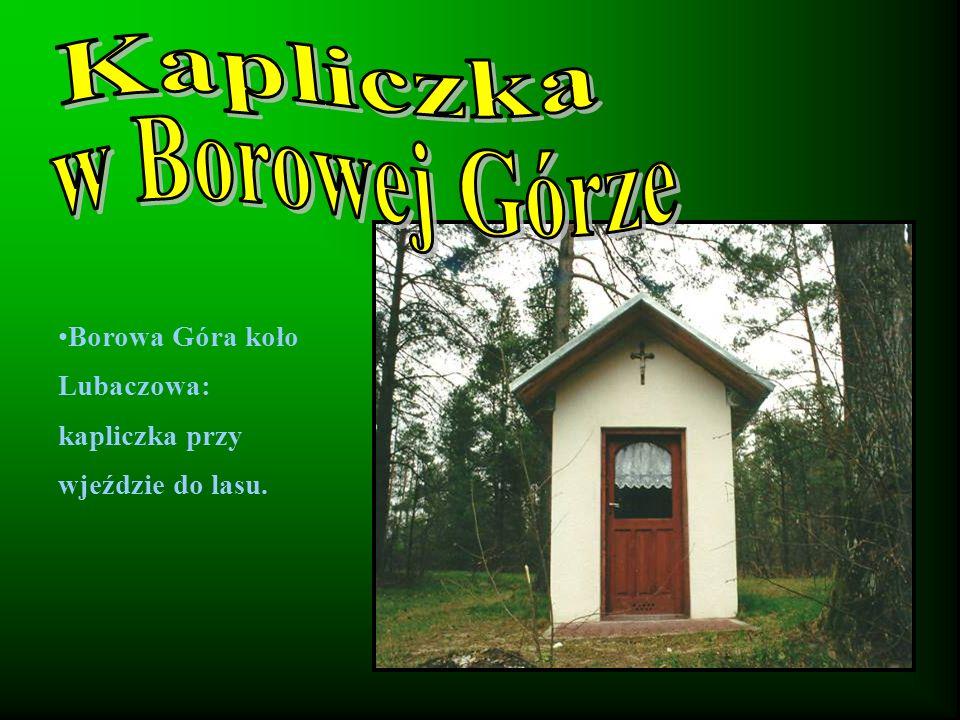 Kapliczka w Borowej Górze