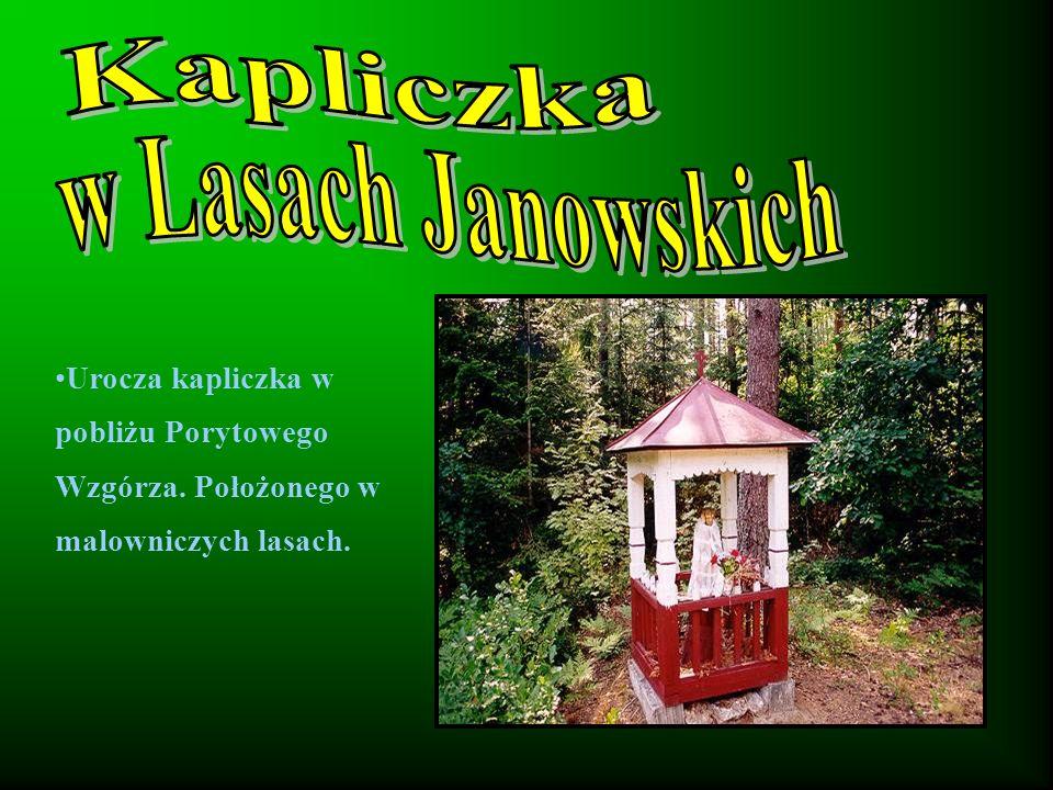 Kapliczka w Lasach Janowskich