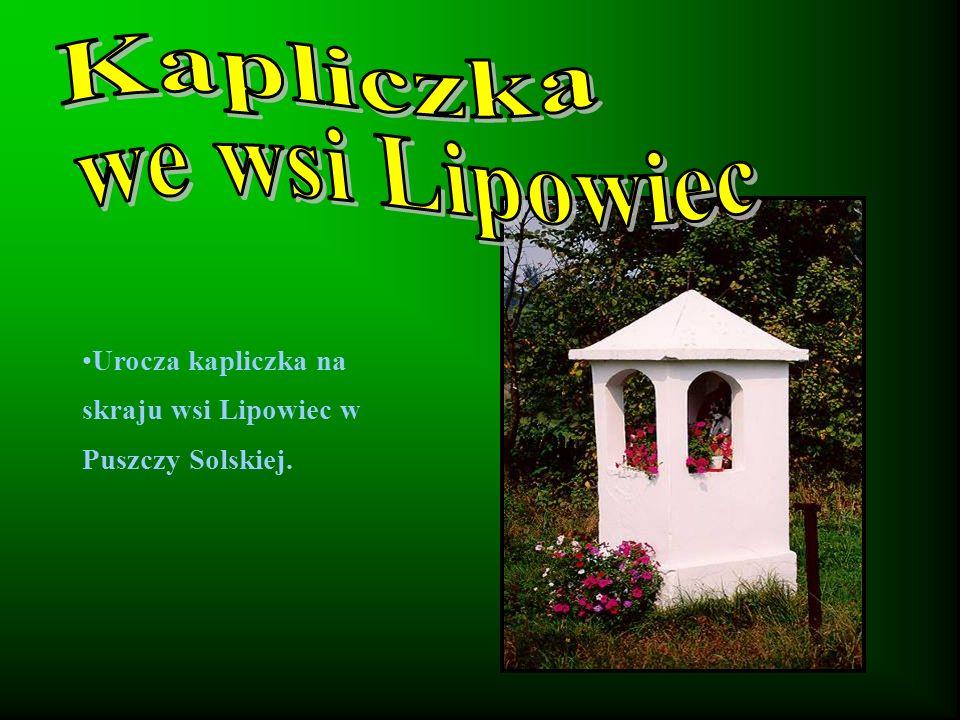 Kapliczka we wsi Lipowiec