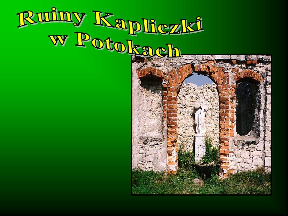 Ruiny Kapliczki w Potokach