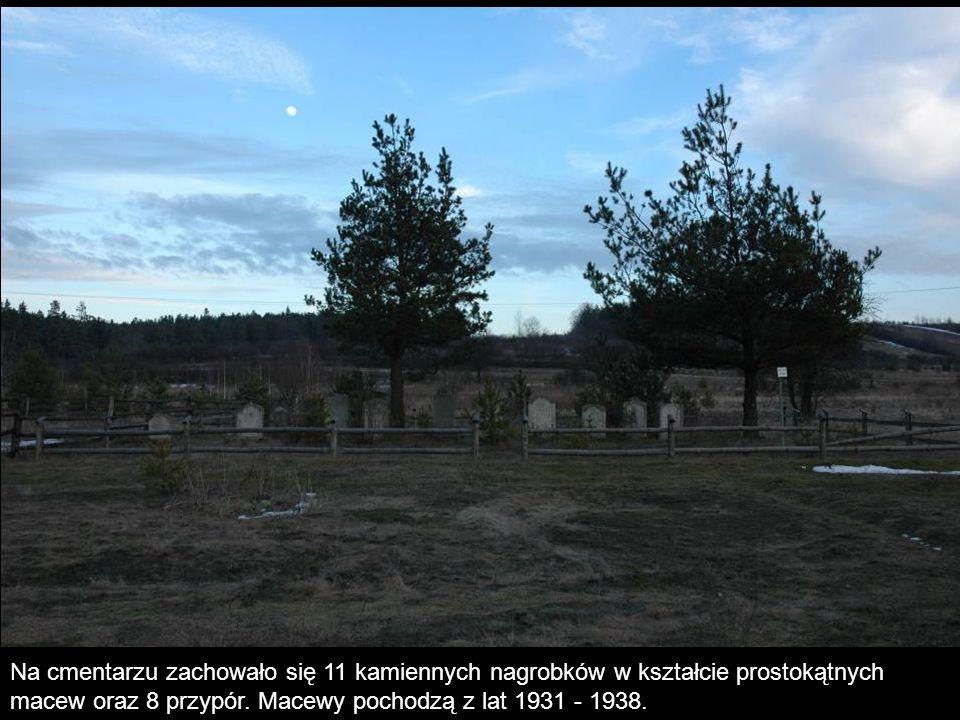 Na cmentarzu zachowało się 11 kamiennych nagrobków w kształcie prostokątnych macew oraz 8 przypór.