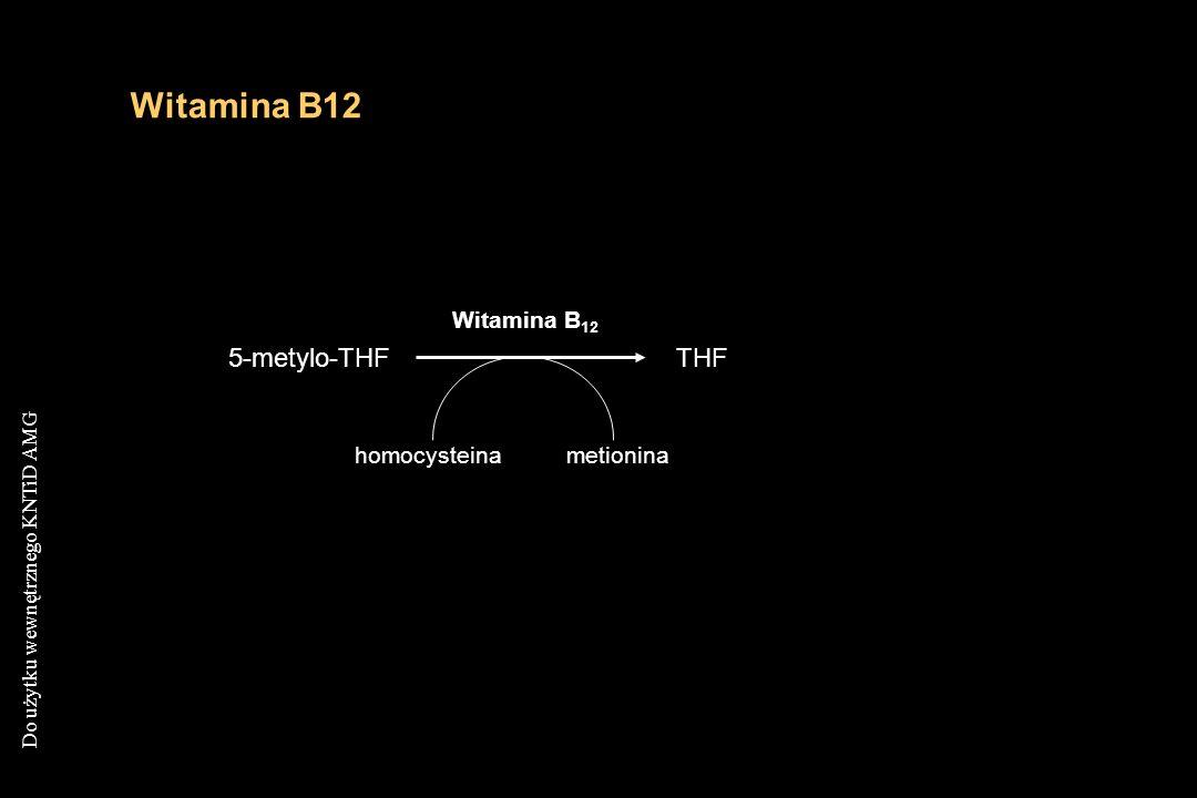 Witamina B12 Witamina B12 5-metylo-THF THF homocysteina metionina