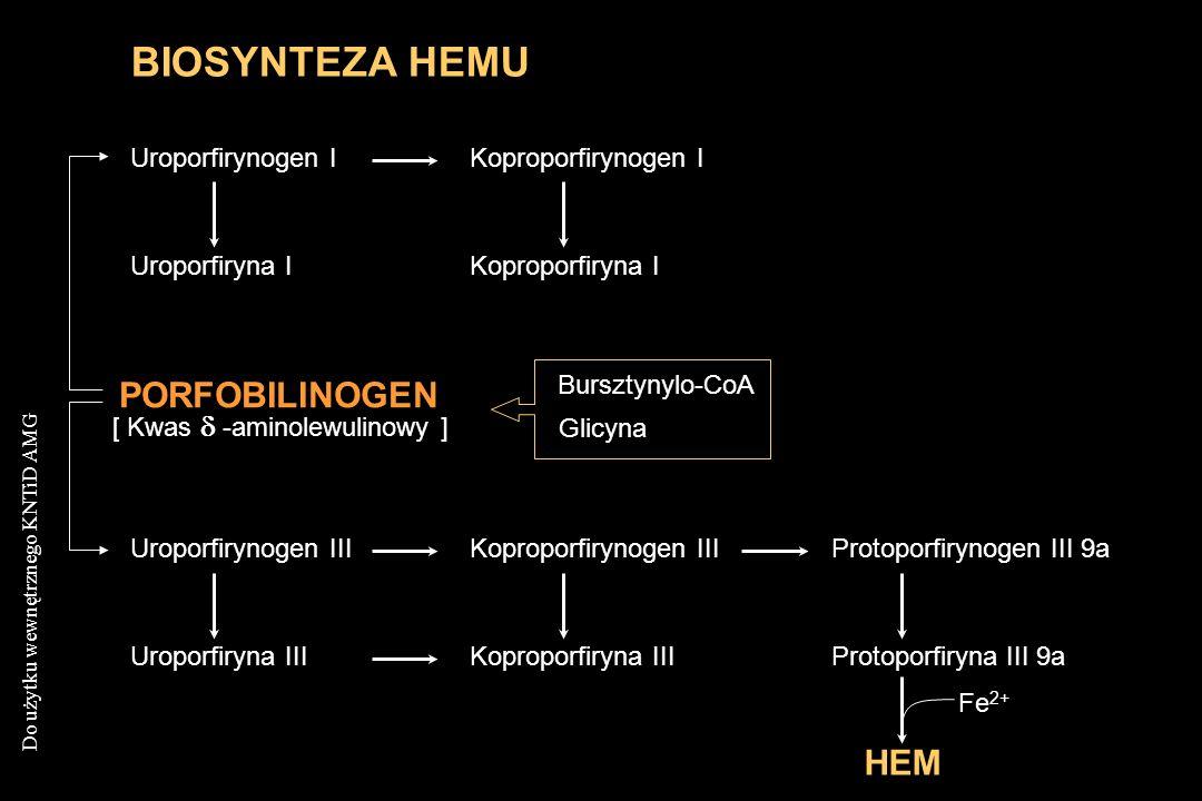 BIOSYNTEZA HEMU PORFOBILINOGEN HEM Uroporfirynogen I