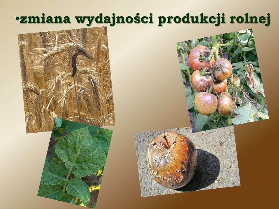zmiana wydajności produkcji rolnej