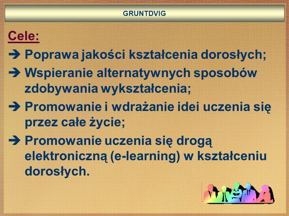 Poprawa jakości kształcenia dorosłych;