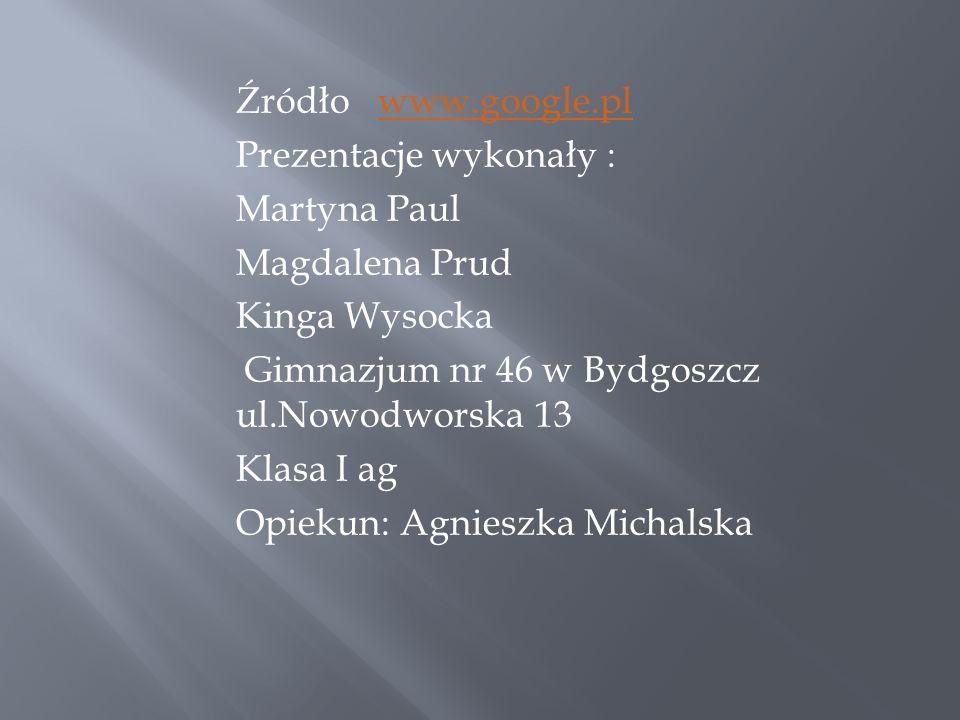 Źródło www.google.pl Prezentacje wykonały : Martyna Paul Magdalena Prud Kinga Wysocka Gimnazjum nr 46 w Bydgoszcz ul.Nowodworska 13 Klasa I ag Opiekun: Agnieszka Michalska