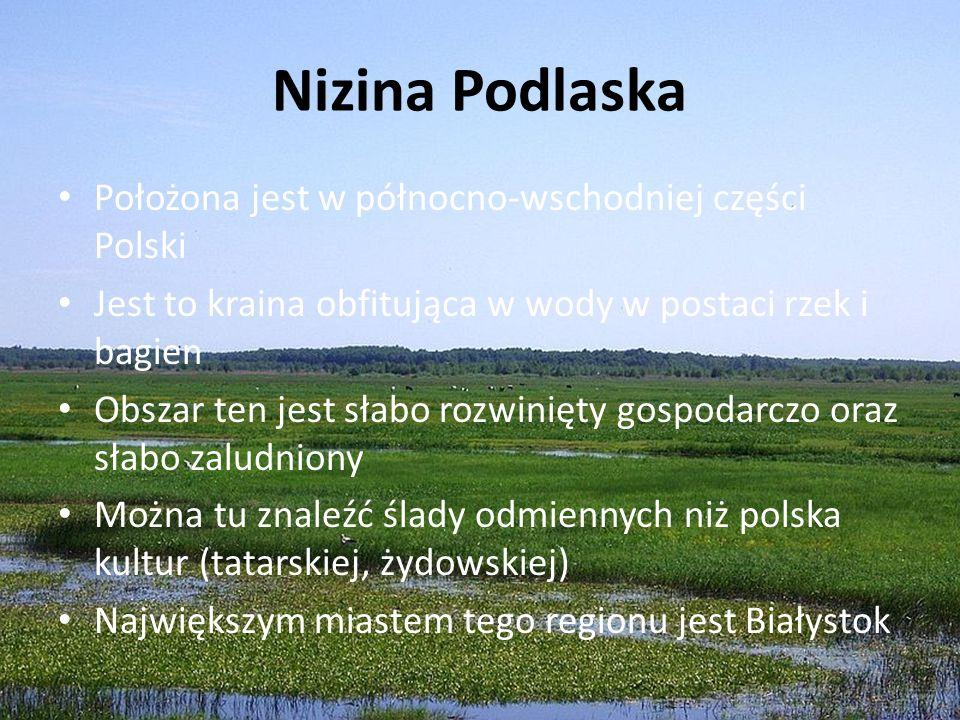 Nizina Podlaska Położona jest w północno-wschodniej części Polski
