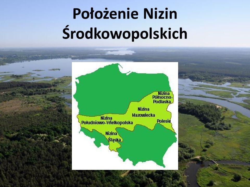 Położenie Nizin Środkowopolskich