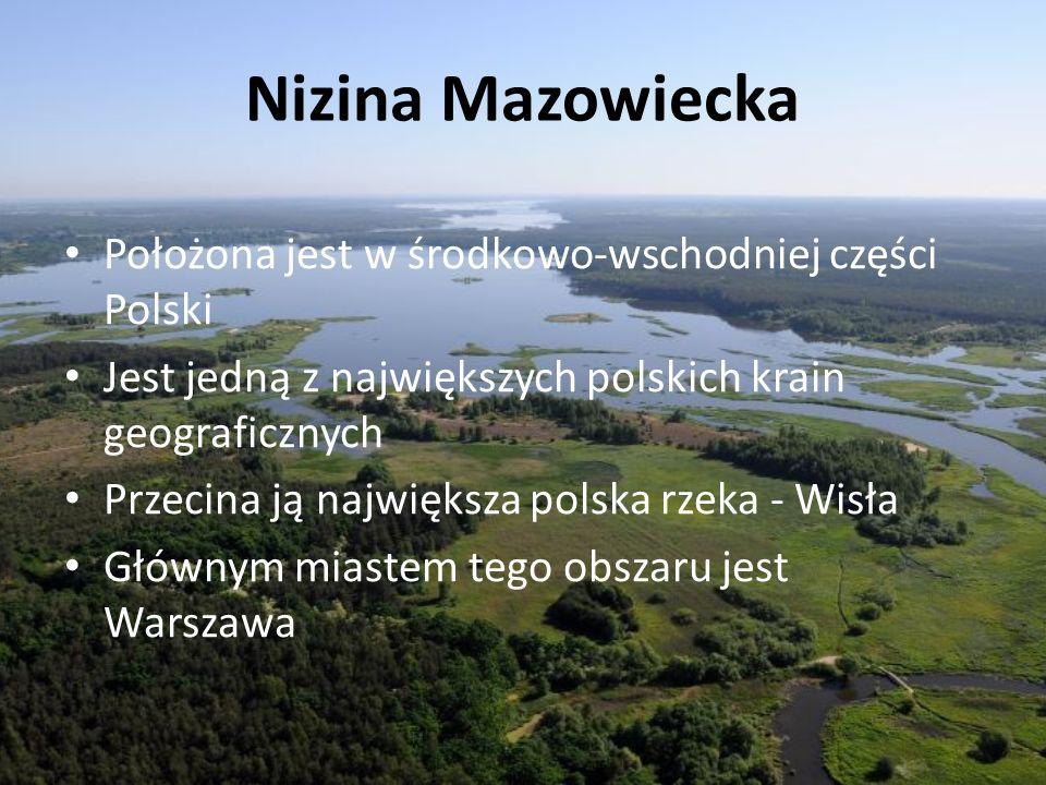 Nizina Mazowiecka Położona jest w środkowo-wschodniej części Polski
