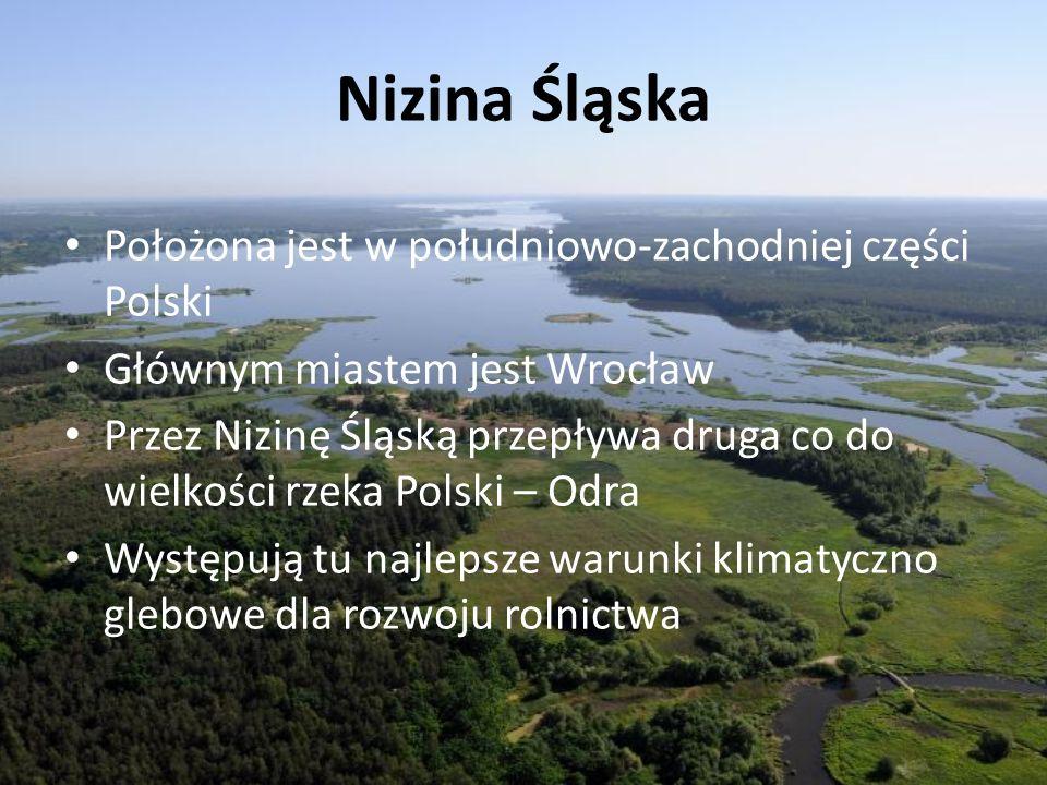 Nizina Śląska Położona jest w południowo-zachodniej części Polski