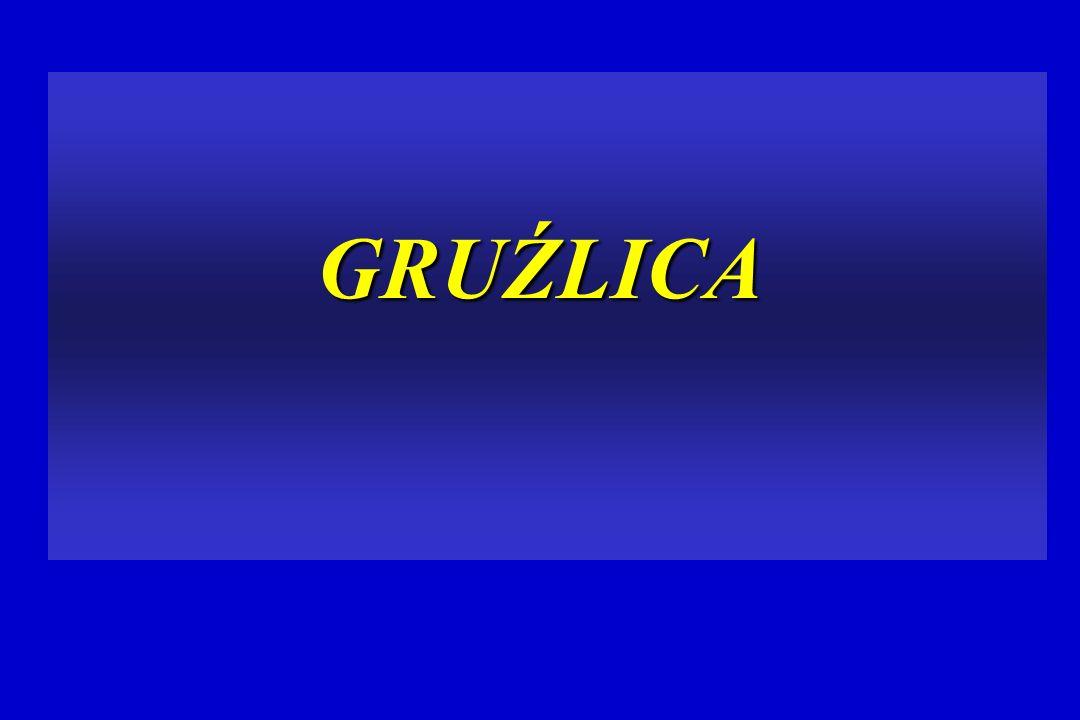 GRUŹLICA