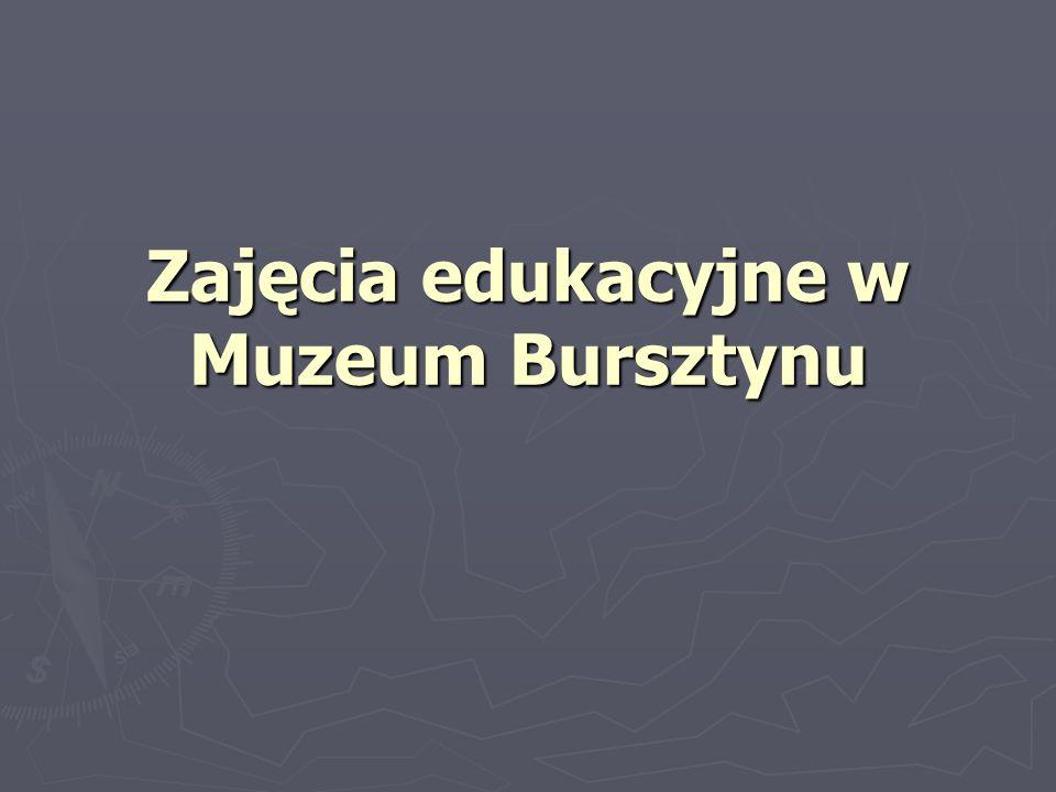 Zajęcia edukacyjne w Muzeum Bursztynu