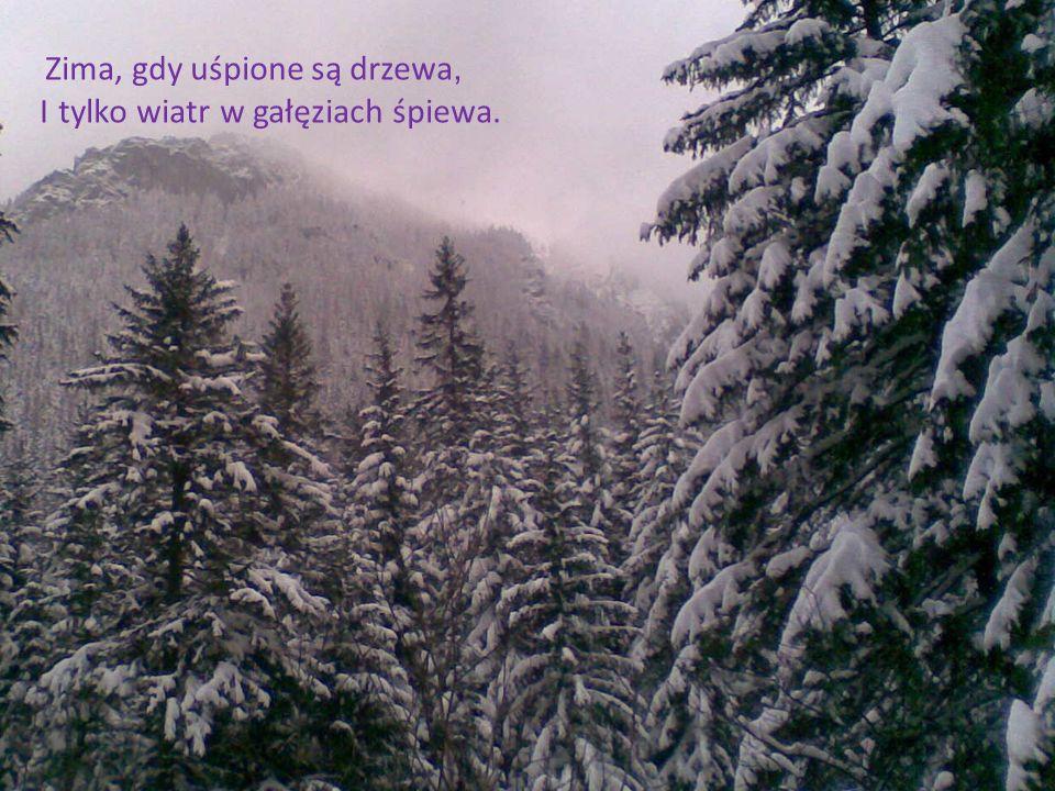 I tylko wiatr w gałęziach śpiewa.