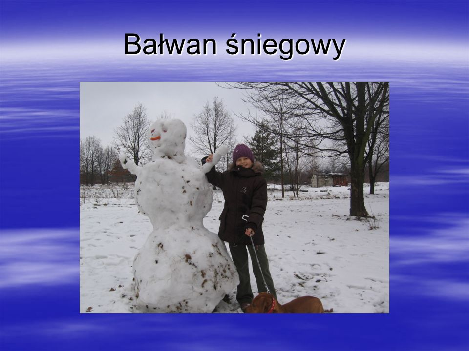 Bałwan śniegowy