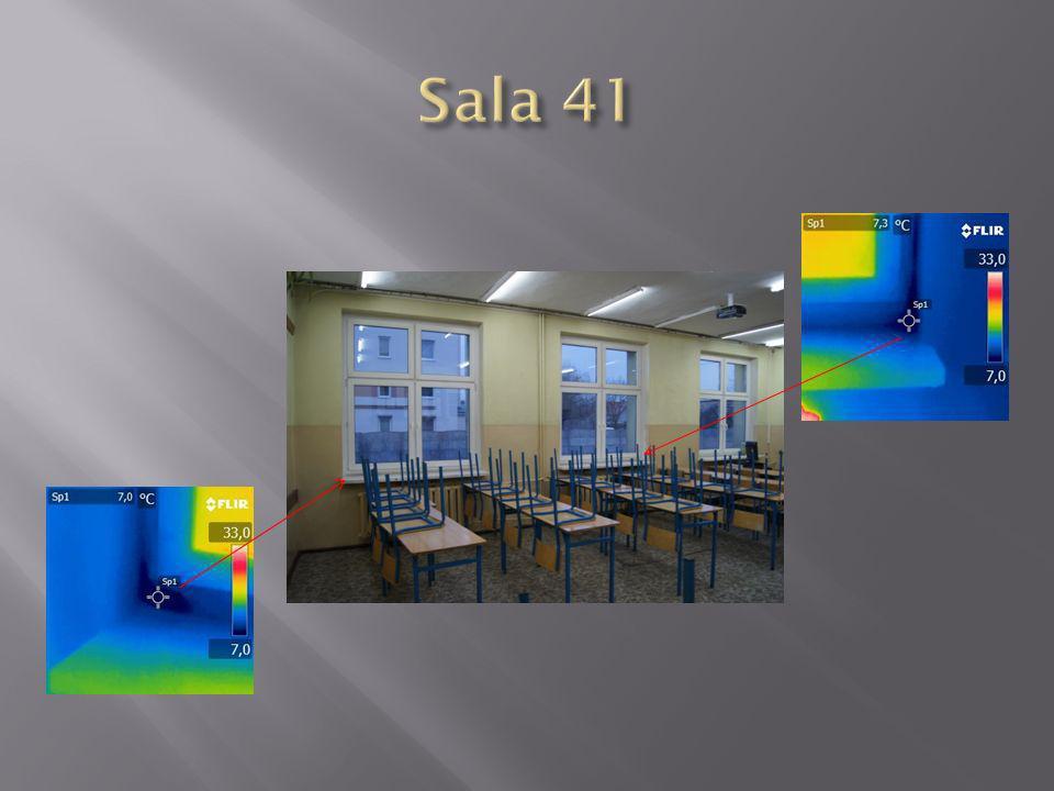 Sala 41