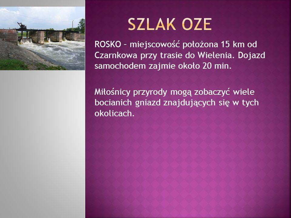 SZLAK OZE ROSKO – miejscowość położona 15 km od Czarnkowa przy trasie do Wielenia. Dojazd samochodem zajmie około 20 min.