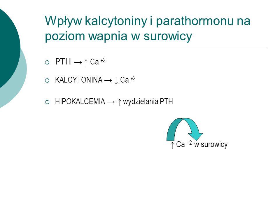 Wpływ kalcytoniny i parathormonu na poziom wapnia w surowicy