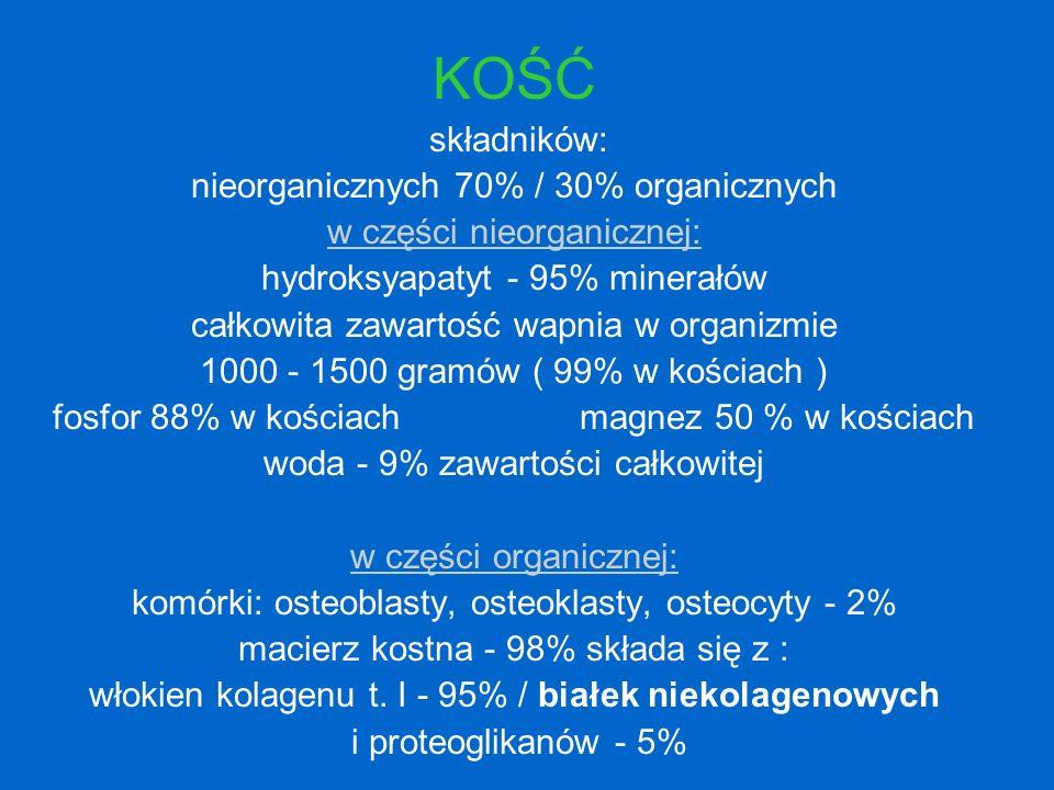 KOŚĆ składników: nieorganicznych 70% / 30% organicznych