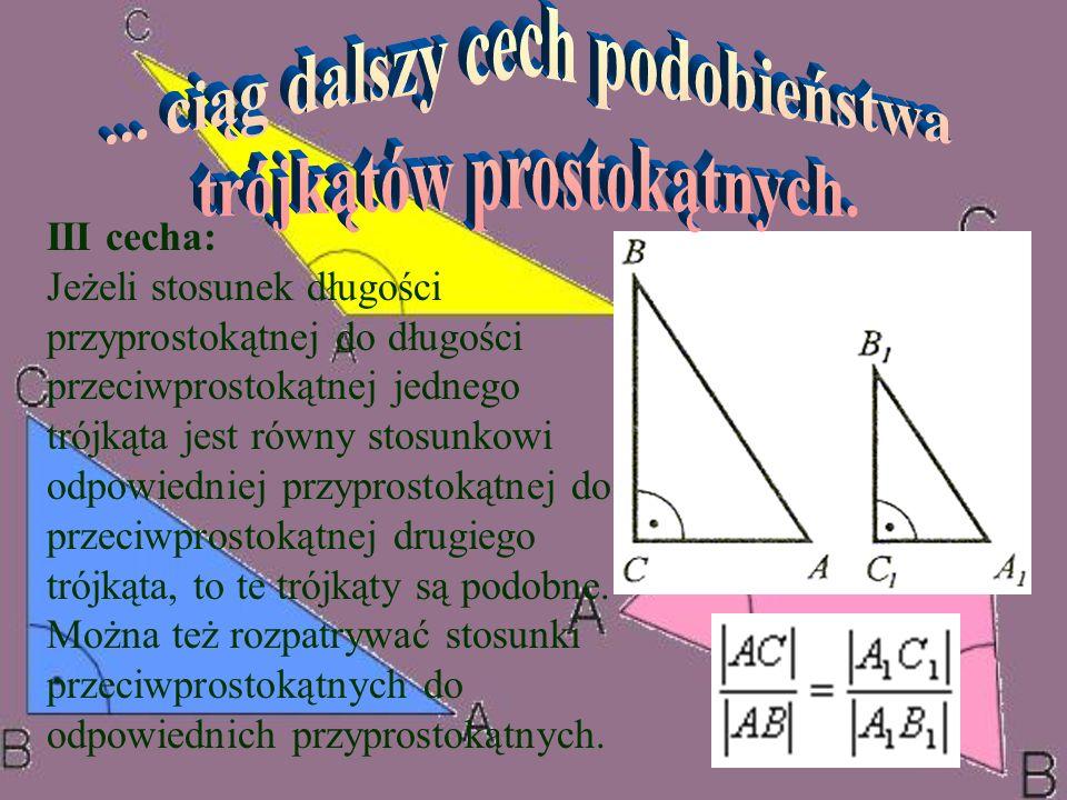 ... ciąg dalszy cech podobieństwa trójkątów prostokątnych.