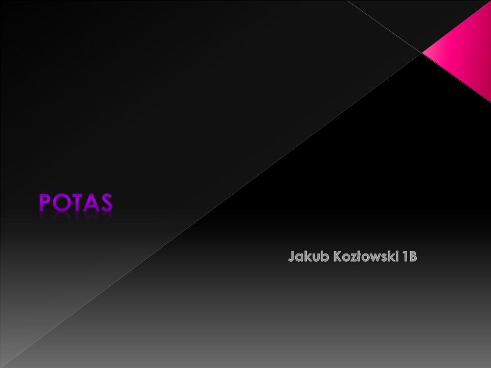Potas Jakub Kozłowski 1B