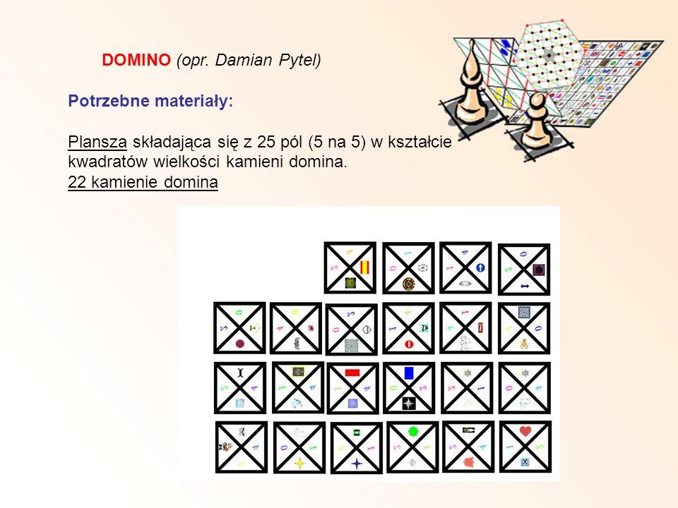 DOMINO (opr. Damian Pytel)