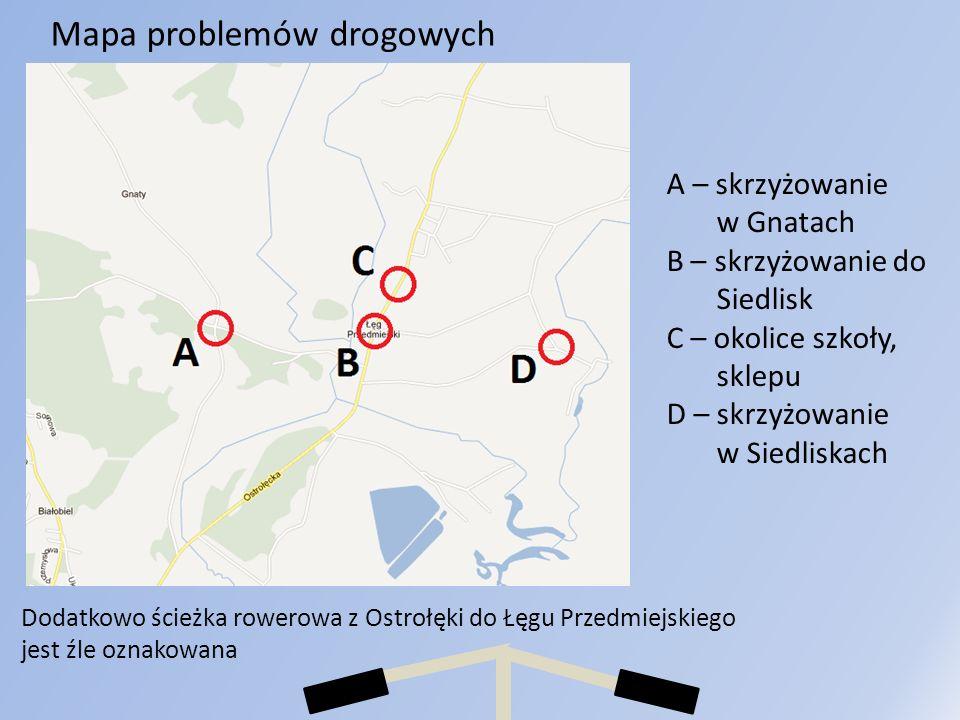 Mapa problemów drogowych