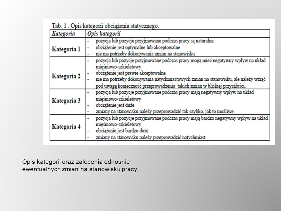 Opis kategorii oraz zalecenia odnośnie ewentualnych zmian na stanowisku pracy.