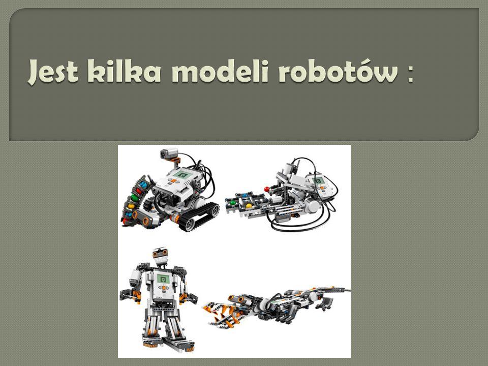Jest kilka modeli robotów :