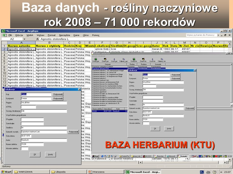 Baza danych - rośliny naczyniowe rok 2008 – 71 000 rekordów
