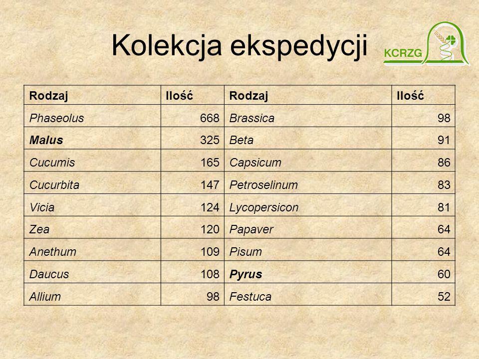 Kolekcja ekspedycji Rodzaj Ilość Phaseolus 668 Brassica 98 Malus 325