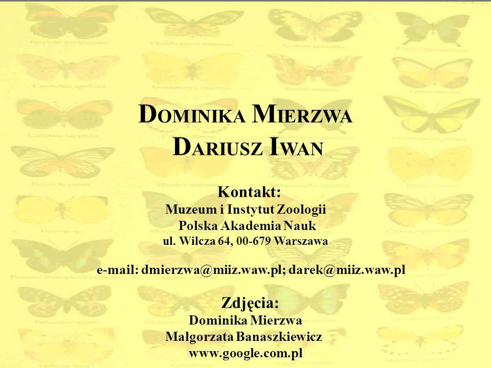 DOMINIKA MIERZWA DARIUSZ IWAN Kontakt: Muzeum i Instytut Zoologii