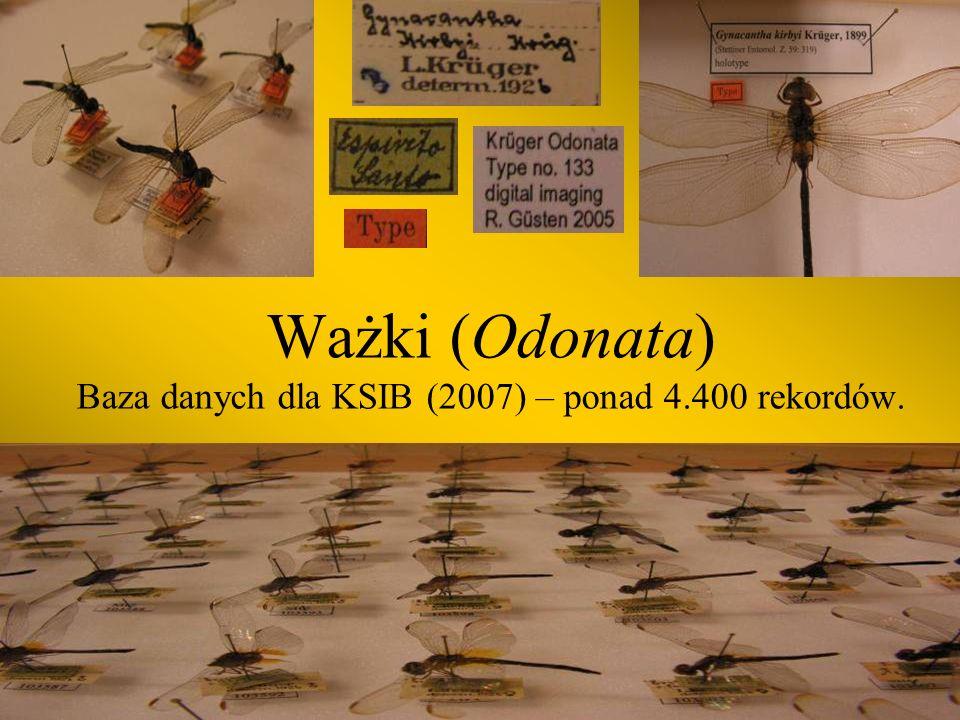 Ważki (Odonata) Baza danych dla KSIB (2007) – ponad 4.400 rekordów.
