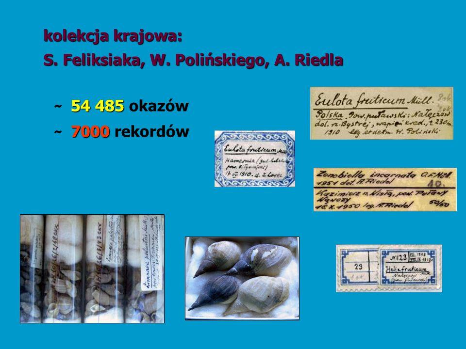 kolekcja krajowa: S. Feliksiaka, W. Polińskiego, A. Riedla